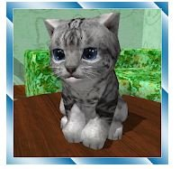Cute Pocket Cat 3D